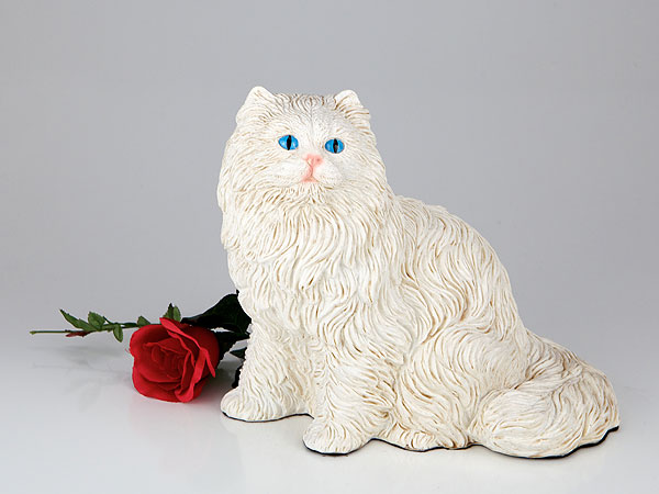 Longhair Cat - White