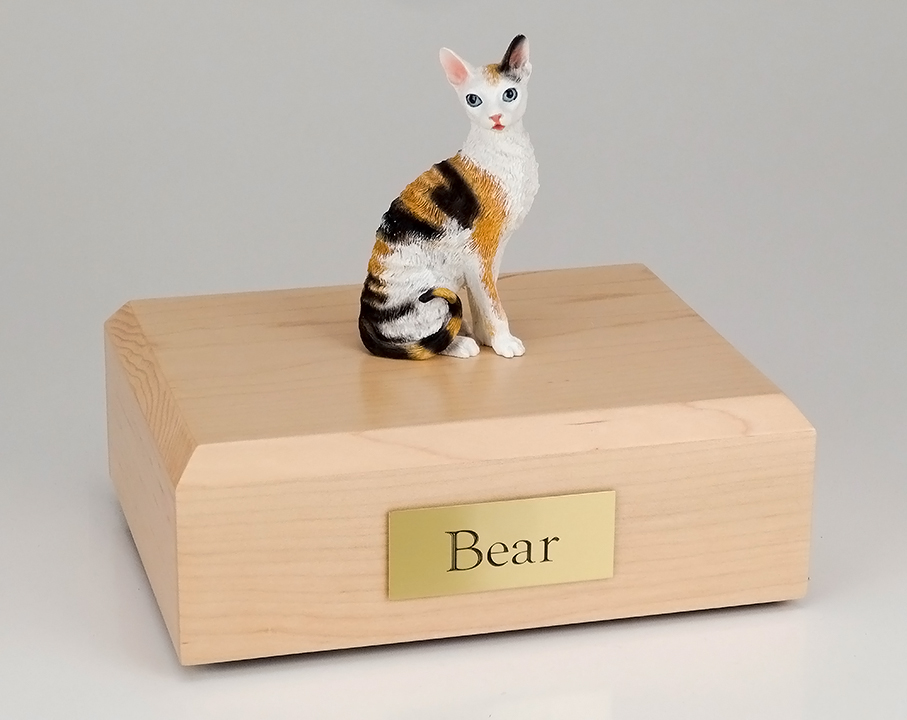 Cat, Cornish Rex, Tort/White - Figurine Urn